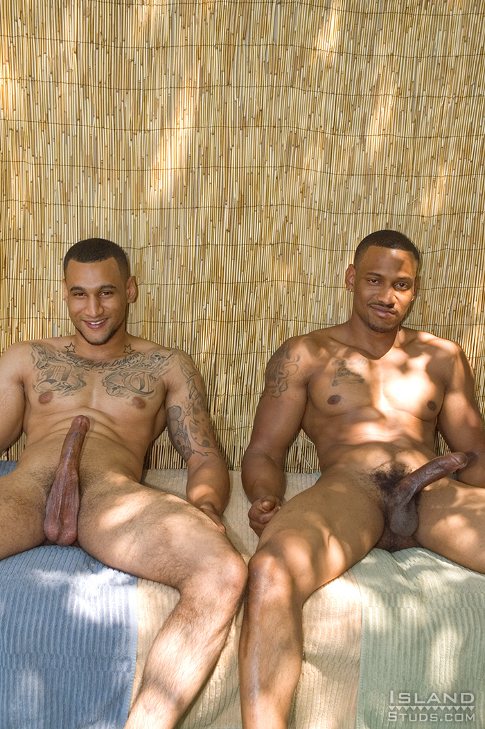 gay-male-twins-free-video-gallery-sexy-babe-nude-high-school-girls